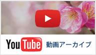 YouTube動画アーカイブ