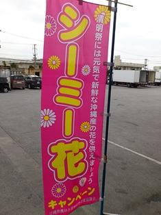 シーミー花キャンペーン(電子メール大)