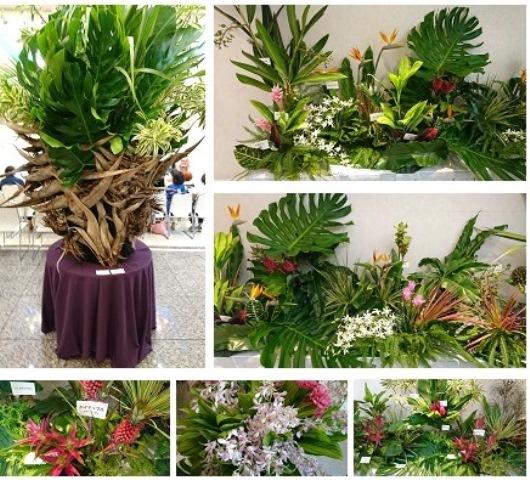 沖縄の花たちと①(Web大)