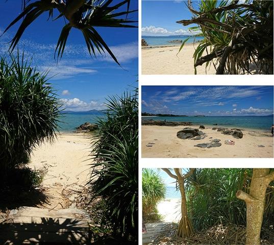 海浜①(Web大)