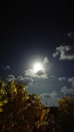 月②(Web小)