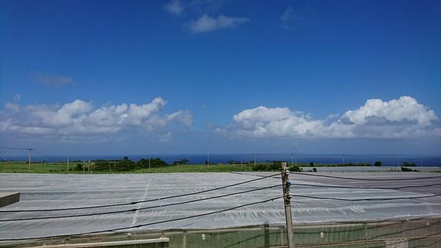 久米島・平張①(Web大)