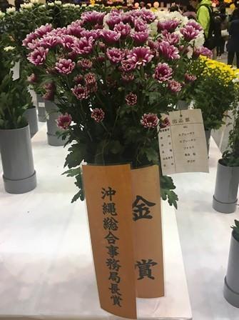 20190125花き品評会⑤(Web小)