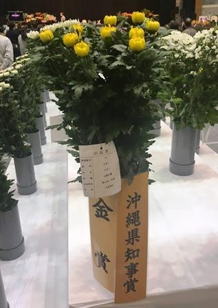20190125花き品評会④(Web小)