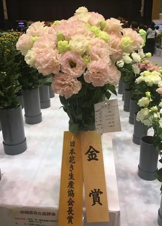 20190125花き品評会⑦(Web小)