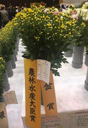 20190125花き品評会②(Web小)