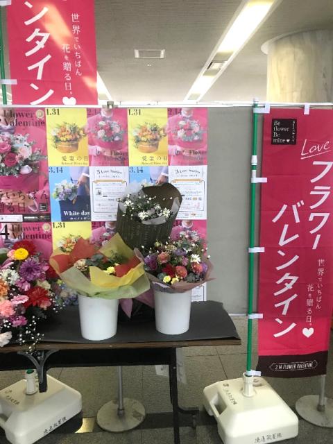 フラワーバレンタイン・フォトブース②