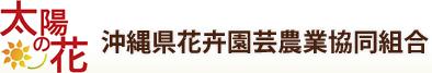 太陽の花 沖縄県花卉園芸農業協同組合